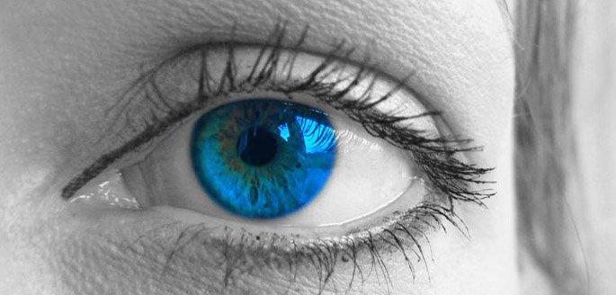 ler-descola-retina